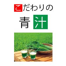 千葉県船橋市で五十余年の漢方と鍼灸の三田浜薬局のこだわりの青汁