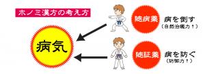 ホノミ漢方の考え方画像