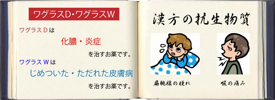 wagurasu